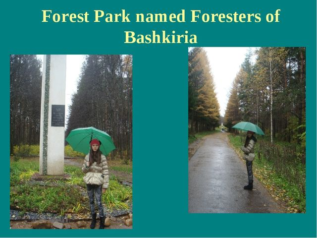 Forest Park named Foresters of Bashkiria