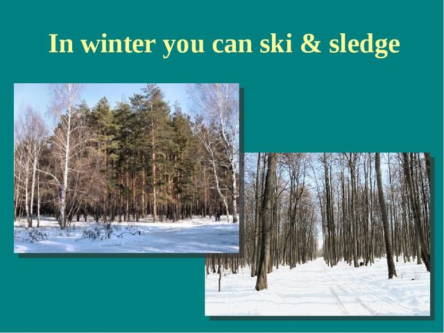 In winter you can ski & sledge