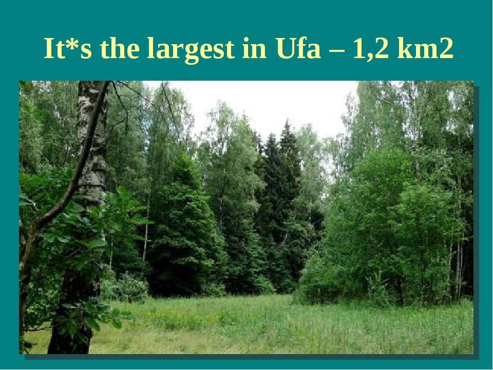 It*s the largest in Ufa – 1,2 km2