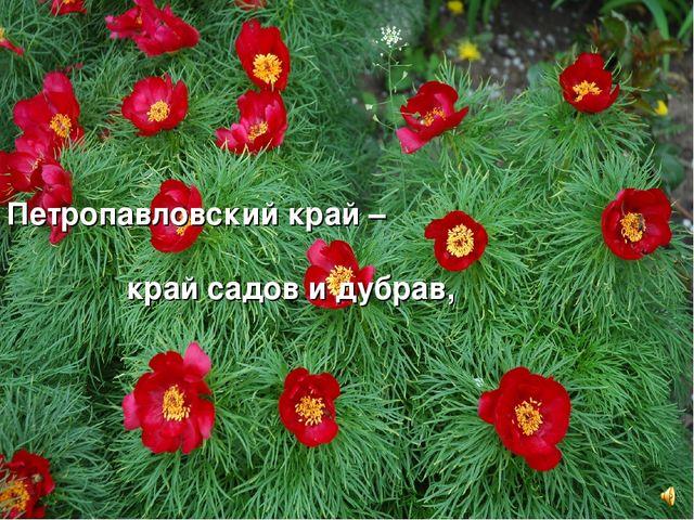 Петропавловский край – край садов и дубрав,