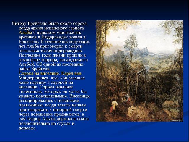 Питеру Брейгелю было около сорока, когда армия испанского герцога Альбы с при...