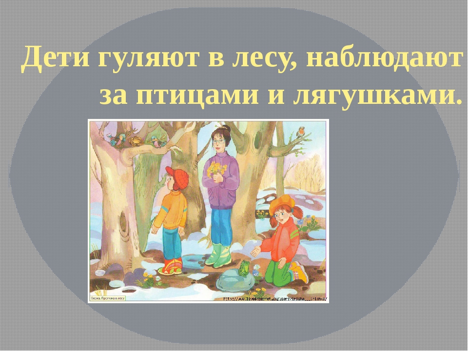 Дети гуляют в лесу, наблюдают за птицами и лягушками.