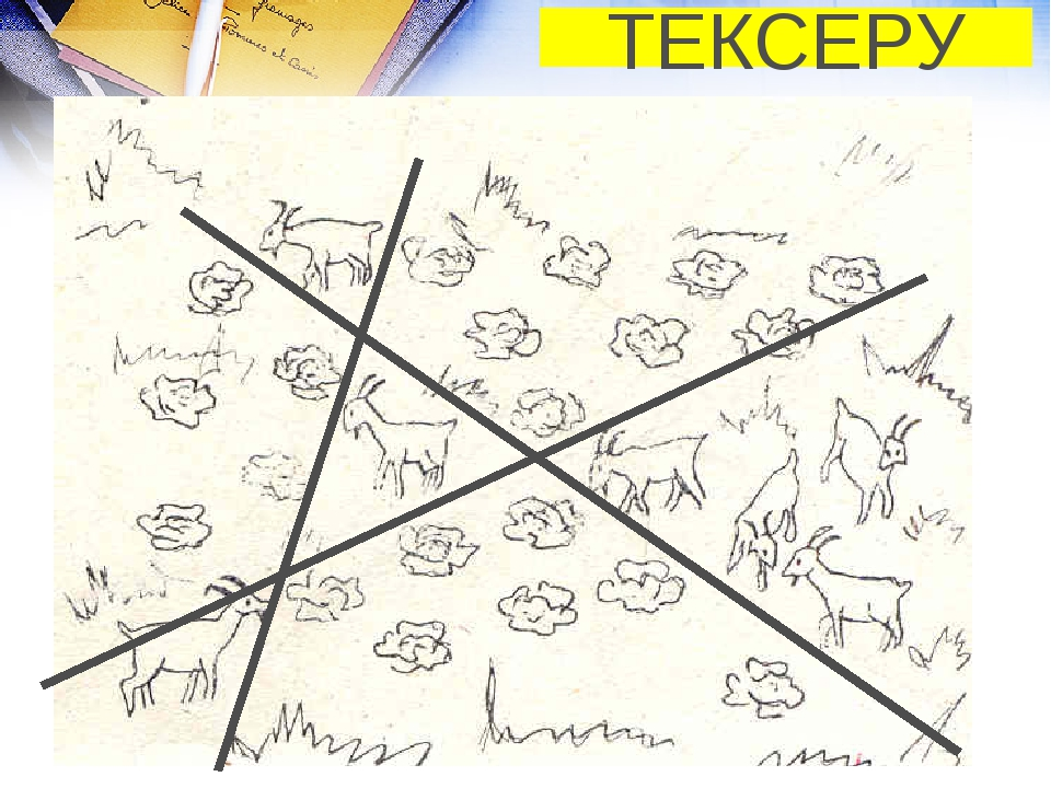 ТЕКСЕРУ