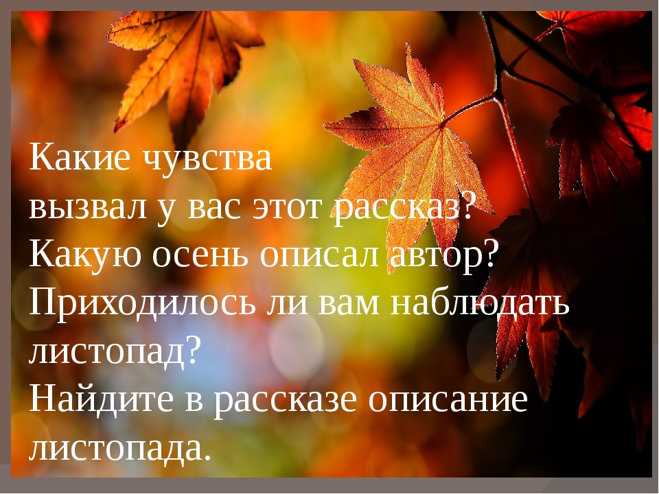 Какие чувства вызвал у вас этот рассказ? Какую осень описал автор? Приходило...
