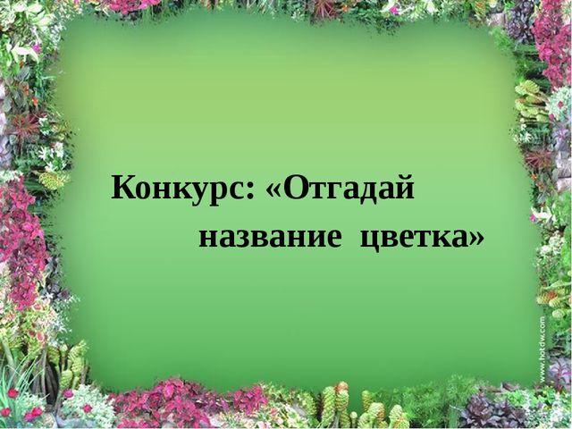 Конкурс: «Отгадай название цветка»