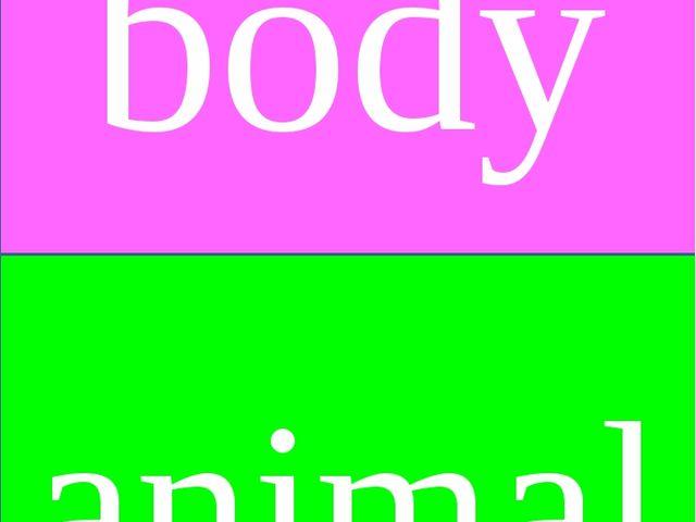 body animal
