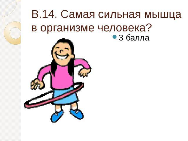 В.14. Самая сильная мышца в организме человека? 3 балла