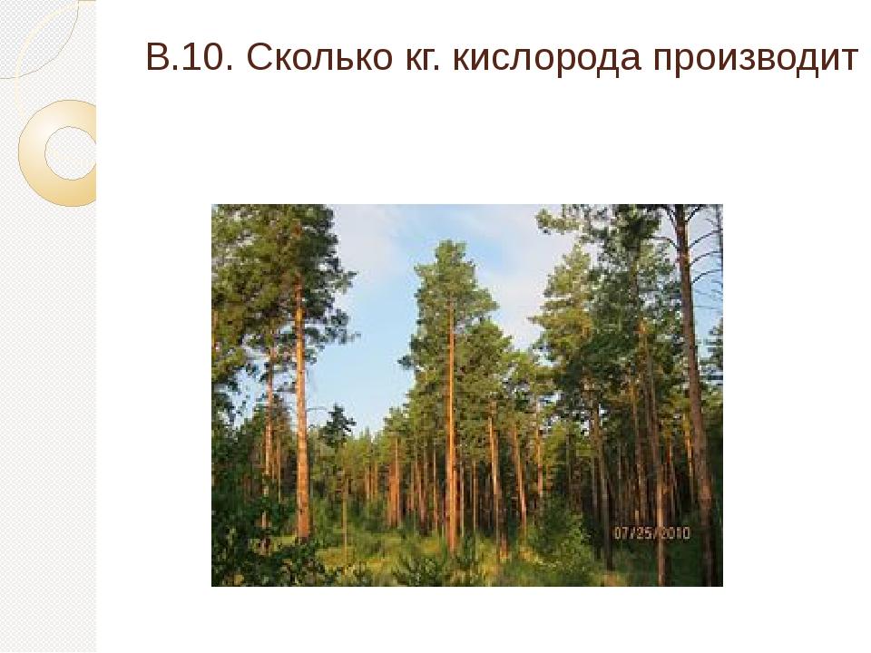 В.10. Сколько кг. кислорода производит одно дерево?(3 балла)