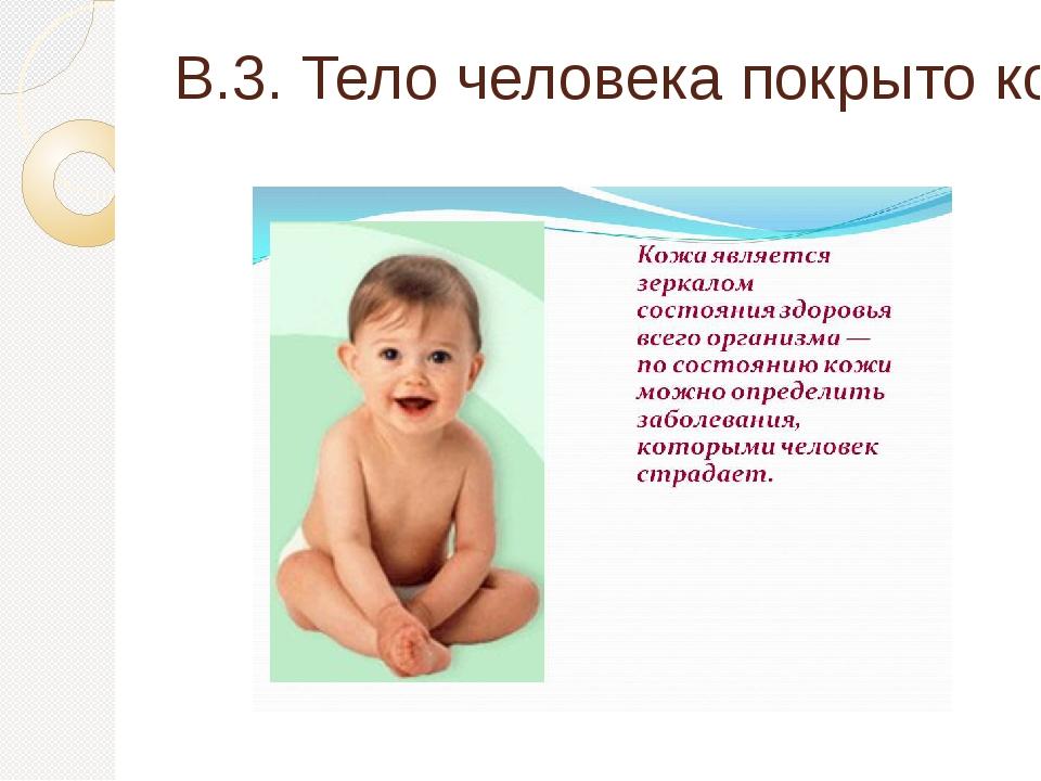 В.3. Тело человека покрыто кожей. Какова площадь?