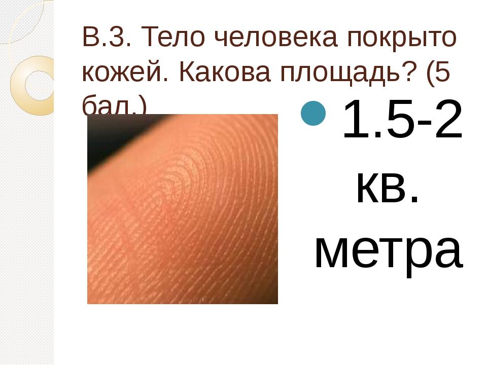В.3. Тело человека покрыто кожей. Какова площадь? (5 бал.) 1.5-2 кв. метра