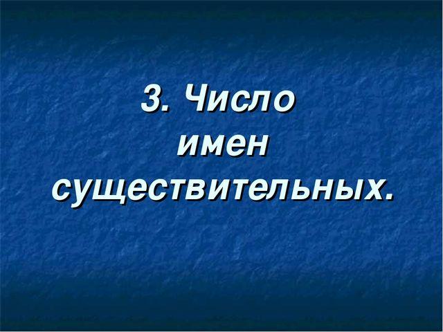 3. Число имен существительных.
