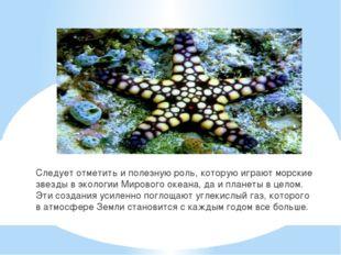 Следует отметить и полезную роль, которую играют морские звезды в экологии Ми
