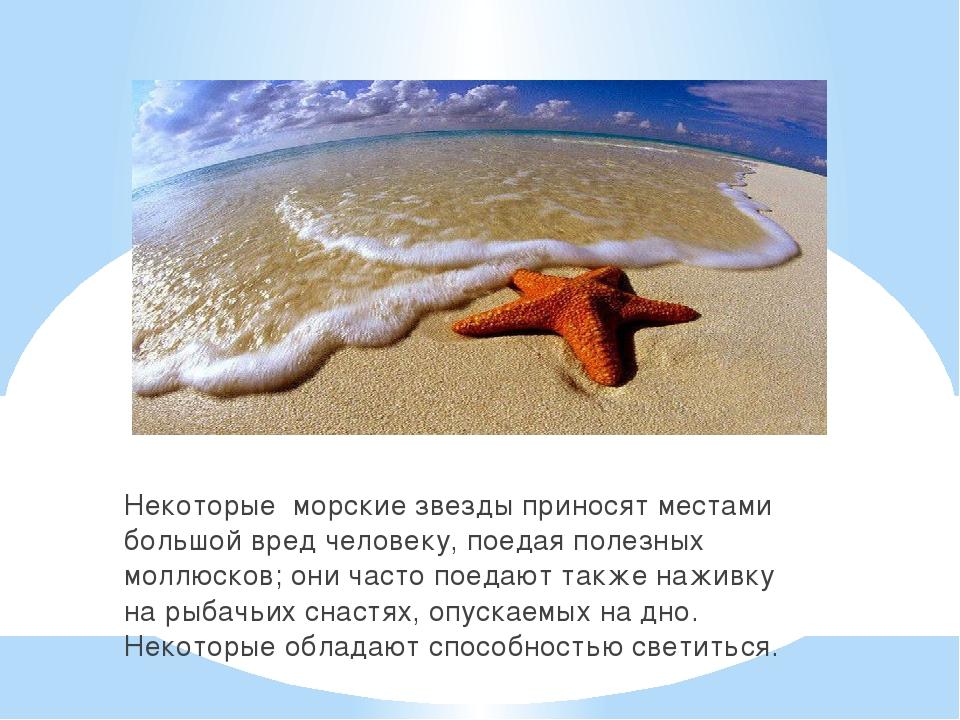 Некоторые морские звезды приносят местами большой вред человеку, поедая полез...