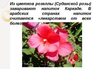 Из цветков розеллы (Суданской розы) заваривают напиток Каркаде. В арабских ст
