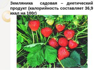 Земляника садовая – диетический продукт (калорийность составляет 36,9 ккал на