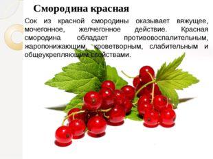 Смородина красная Сок из красной смородины оказывает вяжущее, мочегонное, жел