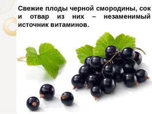 Свежие плоды черной смородины, сок и отвар из них – незаменимый источник вита