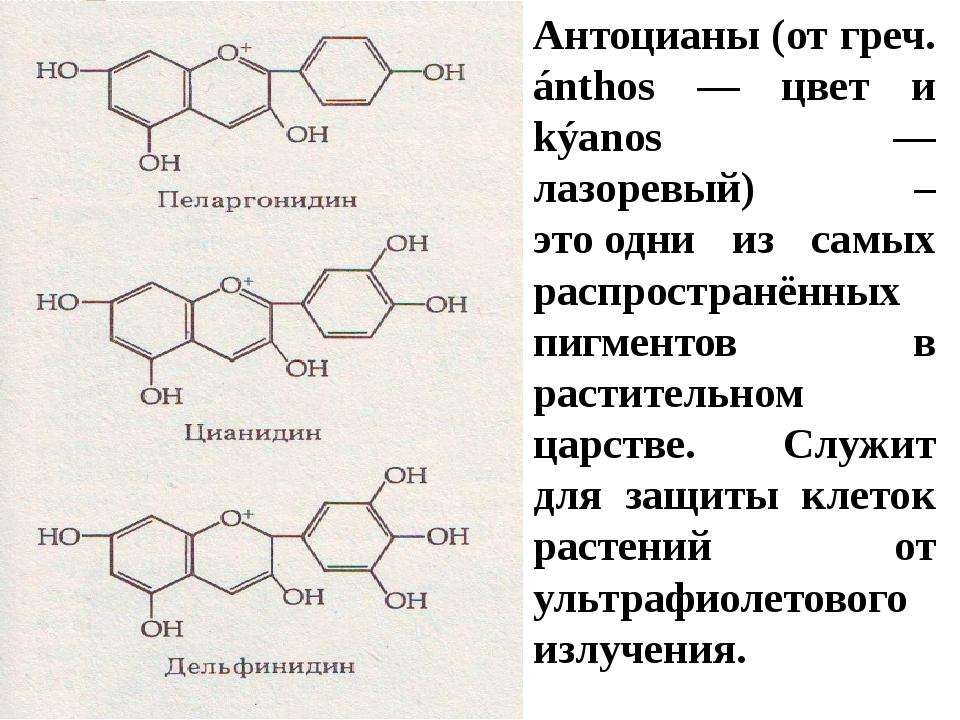 Антоцианы (от греч. ánthos — цвет и kýаnos — лазоревый) – этоодни из самых р...