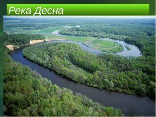 Река Десна РЕКА ДЕСНА