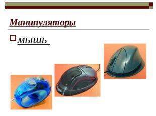 Манипуляторы мышь