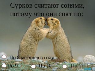 Сурков считают сонями, потому что они спят по: По 8 месяцев в году По 9 По 10