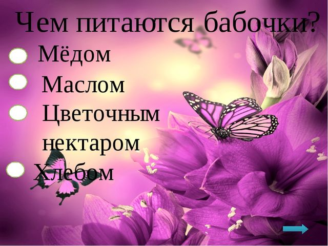 Чем питаются бабочки? Мёдом Маслом Цветочным нектаром Хлебом