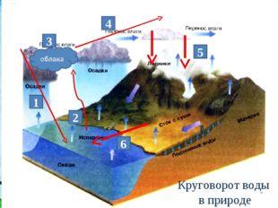 1 2 3 5 6 4 Круговорот воды в природе
