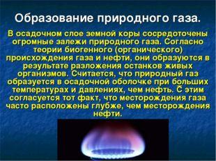 Образование природного газа. В осадочном слое земной коры сосредоточены огром