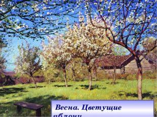 Весна. Цветущие яблони.