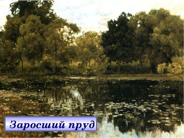Заросший пруд