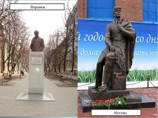 Воронеж Москва