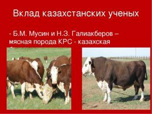 Вклад казахстанских ученых - Б.М. Мусин и Н.З. Галиакберов – мясная порода КР