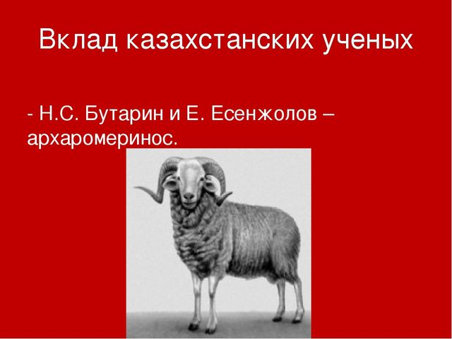 Вклад казахстанских ученых - Н.С. Бутарин и Е. Есенжолов – архаромеринос.