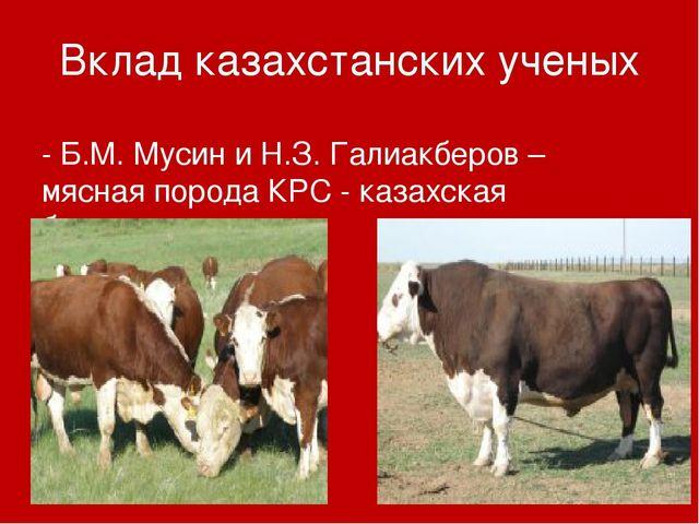 Вклад казахстанских ученых - Б.М. Мусин и Н.З. Галиакберов – мясная порода КР...