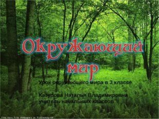 Урок окружающего мира в 3 классе Казурова Наталья Владимировна учитель начал