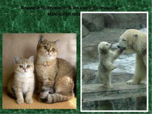 Какими появляются на свет детеныши млекопитающих?