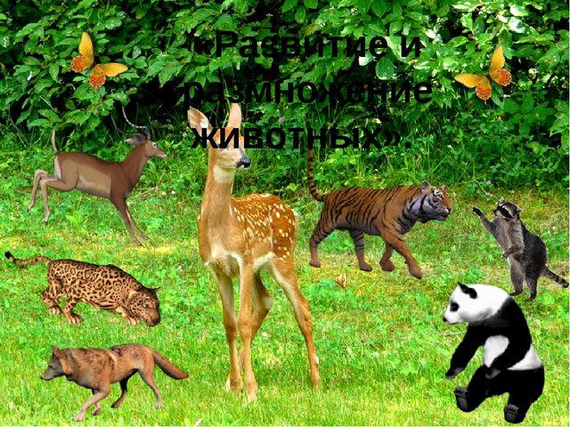«Развитие и размножение животных».