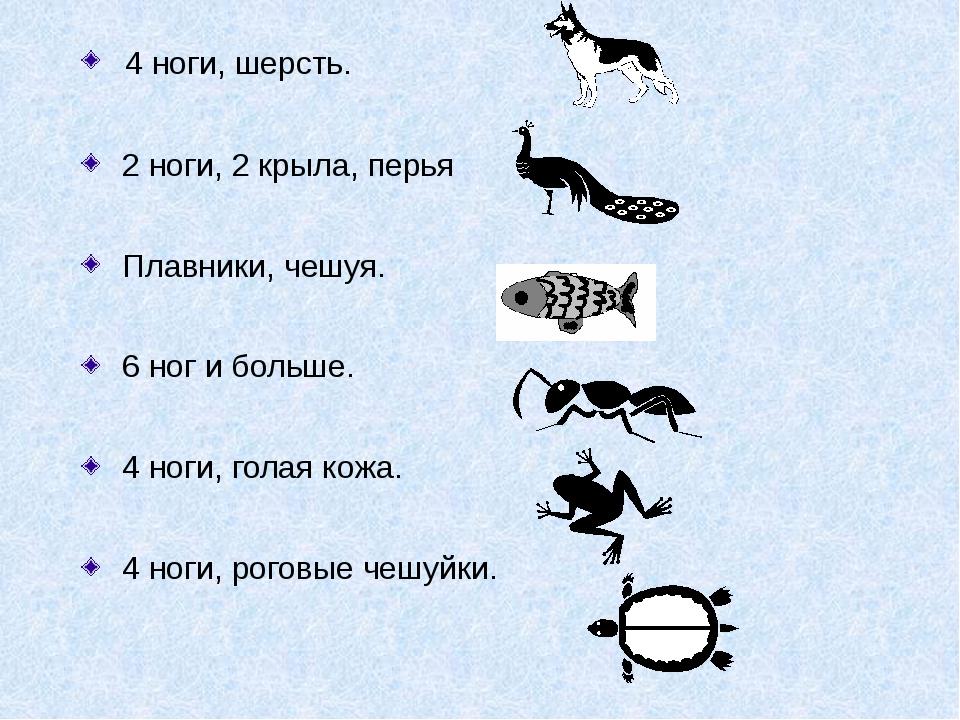 4 ноги, шерсть. 2 ноги, 2 крыла, перья Плавники, чешуя. 6 ног и больше. 4 но...