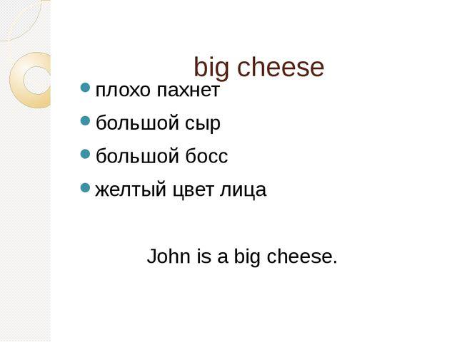 big cheese плохо пахнет большой сыр большой босс желтый цвет лица John is a...