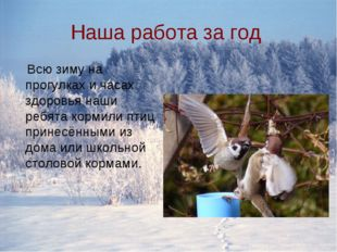 Наша работа за год Всю зиму на прогулках и часах здоровья наши ребята кормили
