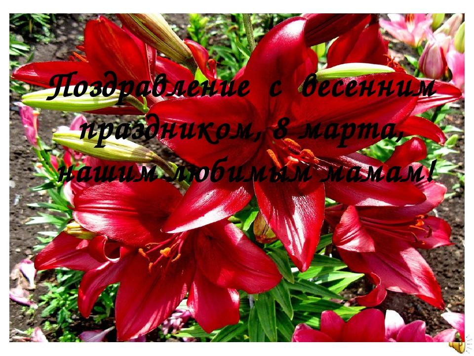 Поздравление с весенним праздником, 8 марта, нашим любимым мамам!