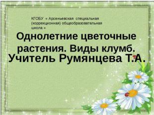 Однолетние цветочные растения. Виды клумб. Учитель Румянцева Т.А. КГОБУ « Ар