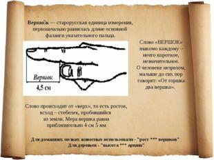 Вершо́к — старорусская единица измерения, первоначально равнялась длине основ