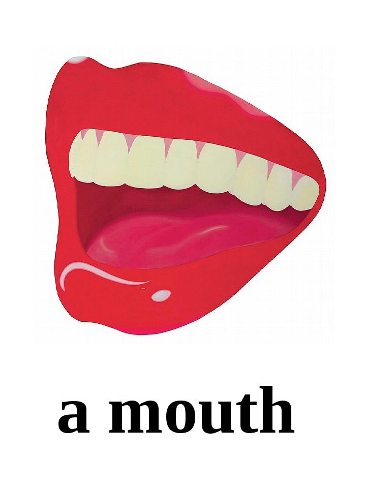 a mouth
