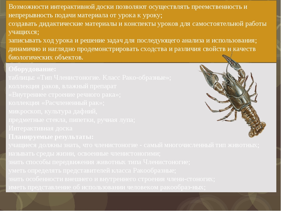 Оборудование: таблицы: «Тип Членистоногие. Класс Ракообразные»; коллекция ра...
