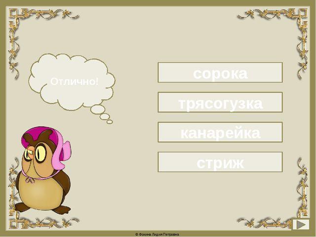 сорока Подумай! Отлично! трясогузка канарейка стриж © Фокина Лидия Петровна