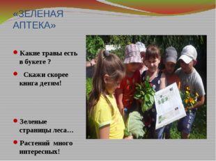 «ЗЕЛЕНАЯ АПТЕКА» Какие травы есть в букете ? Скажи скорее книга детям! Зелены