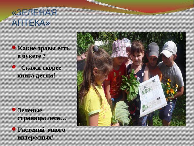 «ЗЕЛЕНАЯ АПТЕКА» Какие травы есть в букете ? Скажи скорее книга детям! Зелены...