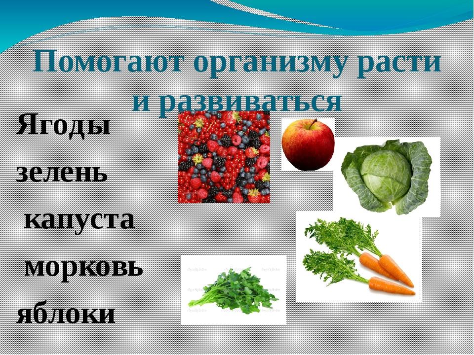 Помогают организму расти и развиваться Ягоды зелень капуста морковь яблоки