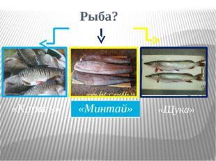 Рыба? «Карась» «Минтай» «Щука»